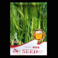 Benih Beer Barley 100 Biji – Retail Asia
