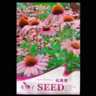 Benih Echinacea (Purple Coneflower) 50 Biji – Retail Asia