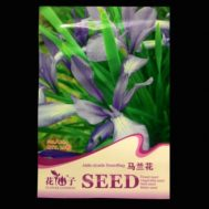 Benih Blue Iris / Jade Cicada Swordflag Iris 20 biji – Retail Asia