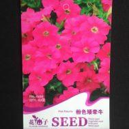 Benih Petunia Pink 60 Biji – Retail Asia