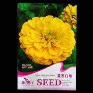 Benih Zinnia Yellow Sun 50 Biji – Retail Asia