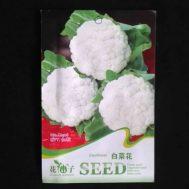 Benih Kembang Kol / Cauliflower 20-60 Biji – Retail Asia