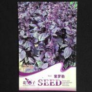 Benih Dark Purple Basil 50 Biji – Retail Asia