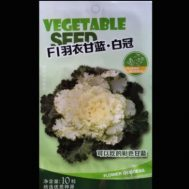 Benih Kale F1-01 10 Biji – Retail Asia