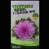 Benih Kale F1-03 10 Biji – Retail Asia
