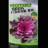 Benih Kale F1-04 10 Biji – Retail Asia