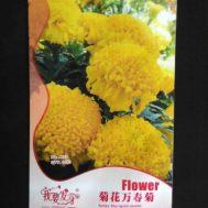 Benih Aztec Marigold Kuning 60 Biji – Retail Asia