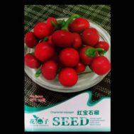 Benih Cabai (Ornamental Red Pepper) 20 Biji – Retail Asia