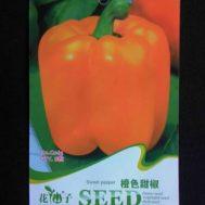 Benih Paprika Orange 8 Biji – Retail Asia