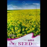 Benih Rape Kuning (Brassica Capestris) 150 Biji – Retail Asia