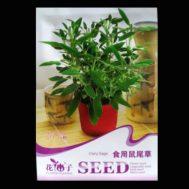 Benih Sage 10 Biji – Retail Asia