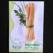 Benih White Asparagus 20 biji – Retail Asia