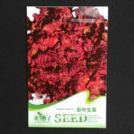 Benih Selada Caiye Lettuce 100 Biji – Retail Asia