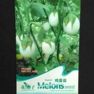 Benih Terong Putih Bulat (White Eggplant) 20 Biji – Retail Asia