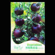Benih Black Cherry Tomato 30 Biji – Retail Asia