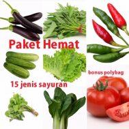 Paket Hemat 15 Jenis Benih Sayuran (Bonus Polybag)