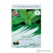 Benih Stevia 10 Biji – Maica Leaf