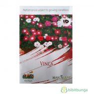 Benih Vinca Mixed 10 biji – Maica Leaf