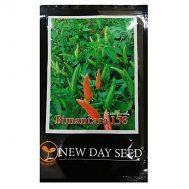 Benih Cabe Rawit Bimantara 158 10 Gram – New Day Seed