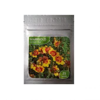 Benih Marigold Lemon Star 25 Biji – Kemasan Foil