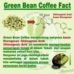 Kopi Hijau / Green Bean Coffee – 250 Gram