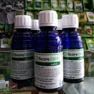 Fungisida Score 250 EC + ZPT – 80ml
