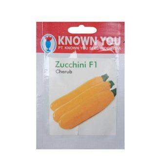 Benih Zucchini Cherub F1 7 Biji – Known You Seed